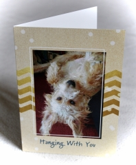 Card-Hanging