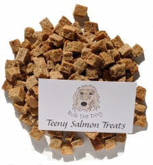 Teeny-Salmon-Treats